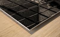 Cell Mates Wood print
