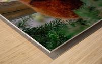 20181021 DSC 0500  2  Wood print