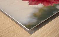 20181021 DSC 0039  2  2 Wood print