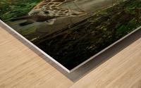 20181104 DSC 0203  3  Wood print