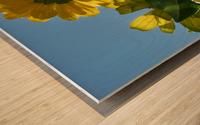 Summer Sky Flowers 8 AUG 2020 Wood print