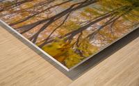 Colors of Nature apmi 1857 Wood print