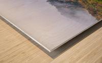 Seneca North apmi 1878 Wood print