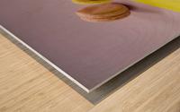 food macaroon photography Wood print