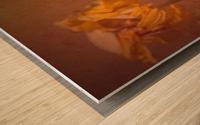 Etude Zen 7 p Wood print