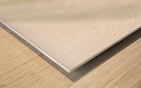 Aurore boreale 1 Wood print