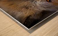 Wolf 2 Wood print