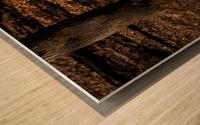 Bison Wood print