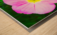 lady bug flower Wood print