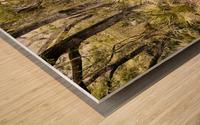 OCA 251 Wood print