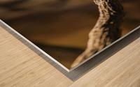 Perfect Pose  Bird  Wood print