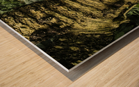 Trees Textures Wood print