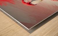 Perroquet  Wood print