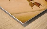 audiobook Wood print