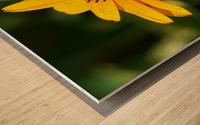 Sunny Side Wood print