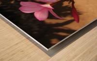 Pink Plumeria Wood print