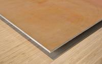 The enlightened sealing corner Wood print
