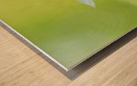 landscape_2_0846 Wood print