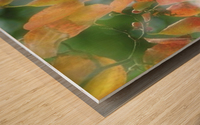 landscape_2_1026 Wood print
