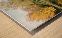 Tree reflection Wood print