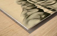 Strange goings on at 't Meertje - 10-02-16 Wood print