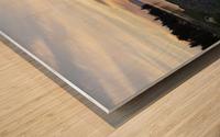 Walking in Light Wood print