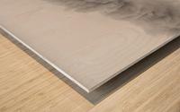 Little-Jumbo Wood print