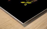 Elements... Wood print
