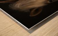 Sapience Wood print