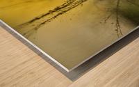 A golden morning shower Wood print