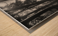 The first light... Wood print