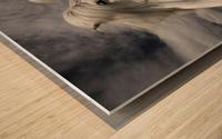 Inseparables Wood print