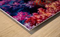 Coral Hind Wood print