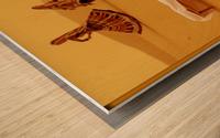 Rajasthan Tours Wood print