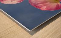 Shirley Poppies Wood print
