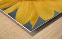 Monarch Butterfly On Sunflower. Wood print