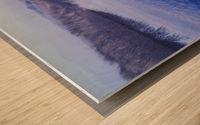 Clouds reflected in the deflection plain; Lakeside, Oregon, United States of America Wood print