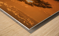 Silhouette of acacia tree at orange sunset; Botswana Wood print
