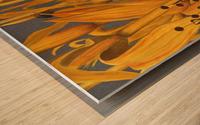 Harris Sparrow Wood print