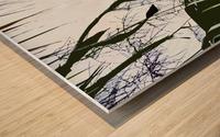 Orioles Abstract 2  Impression sur bois