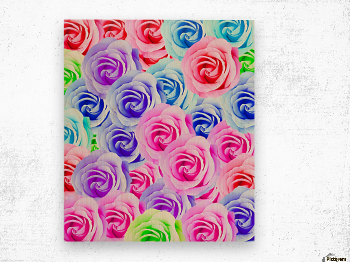 closeup colorful rose texture background in pink purple blue green Wood print