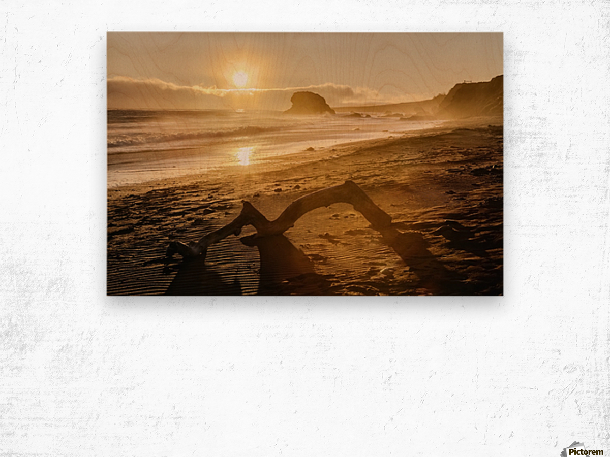 Seashore at sunset, San Simeon State Park; California, United States of America Wood print