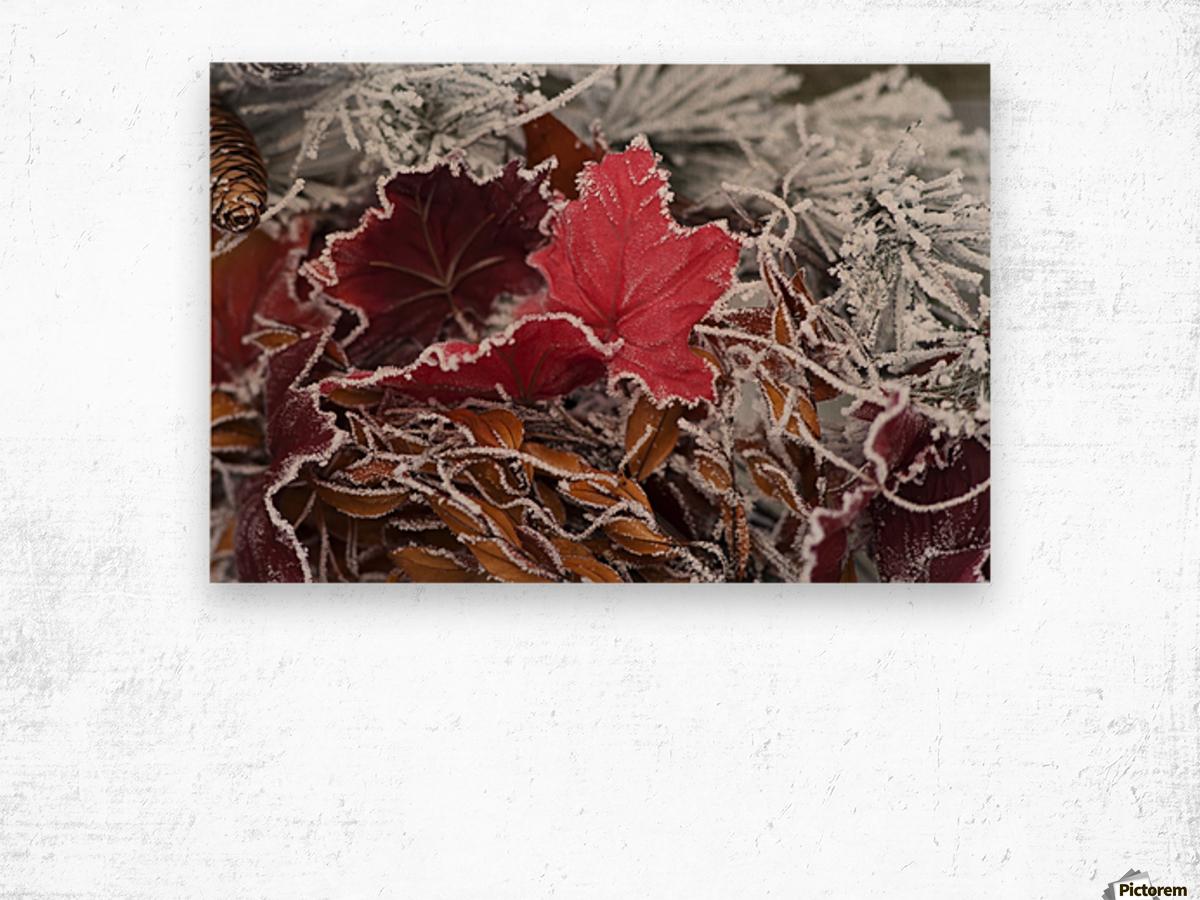 Hoarfrost covers holiday decorations on a wreath, Christmas season; Minnesota, United States of America Wood print