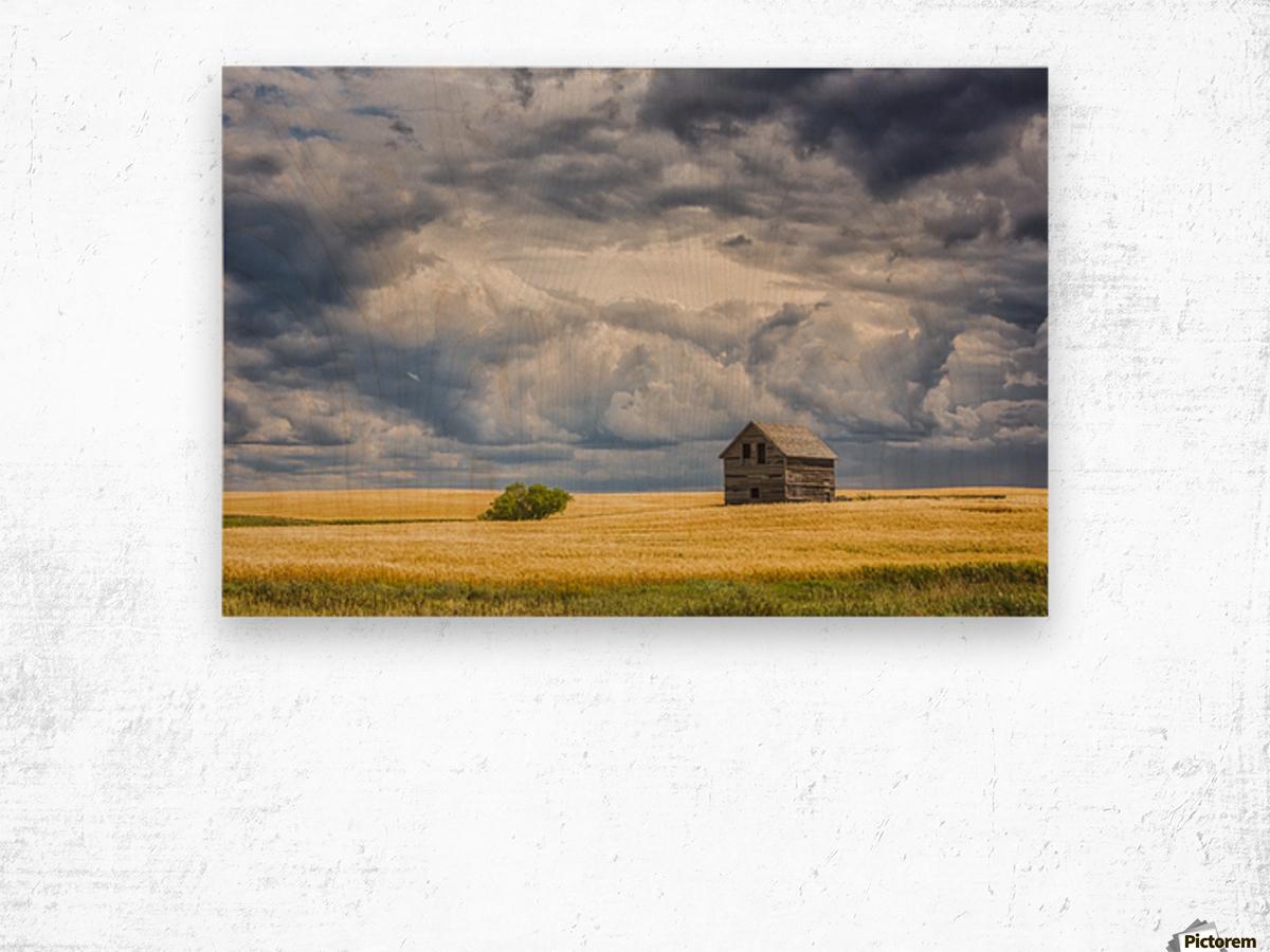 Abandoned building along the roads of rural Saskatchewan; Saskatchewan, Canada Wood print