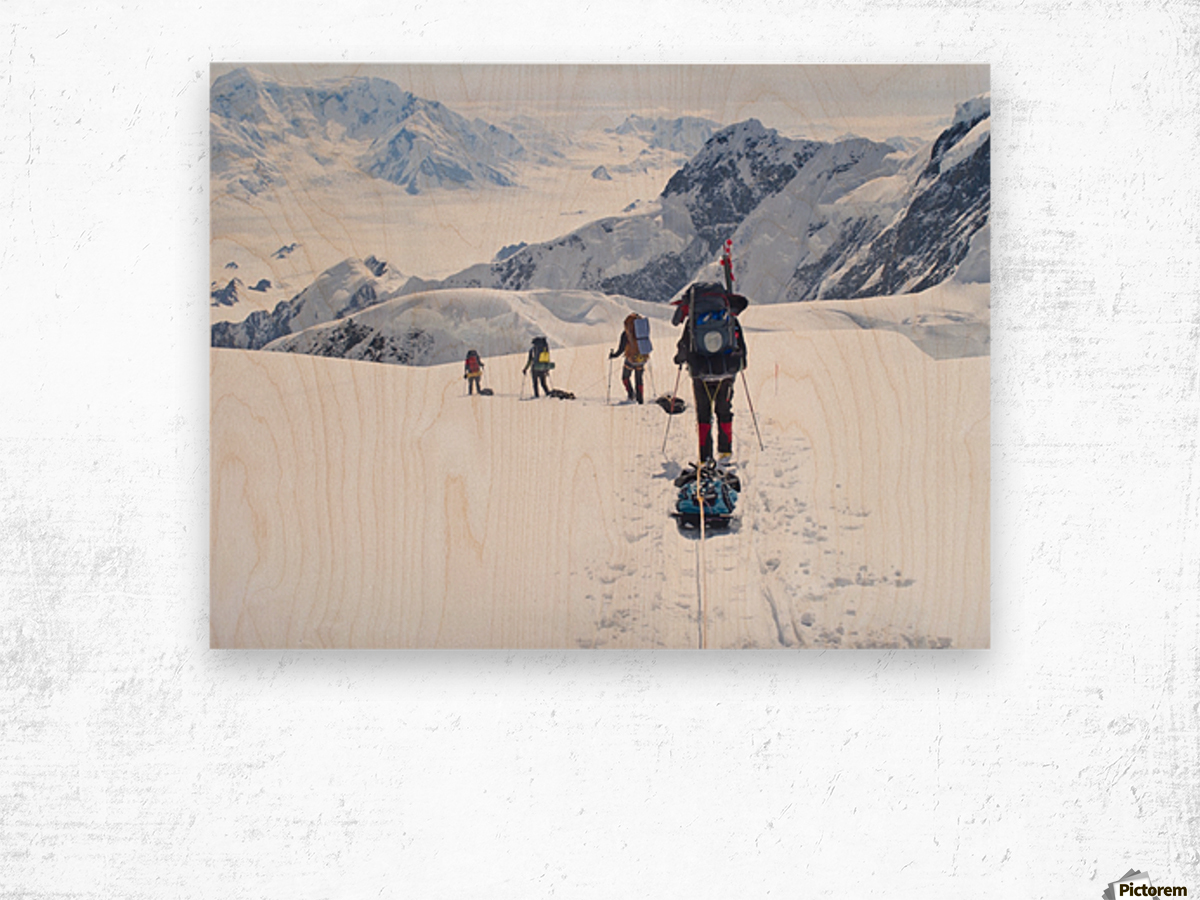 Mountaineer Group Descends Into The Maccarthy Gap On The King Trench Route, Mt. Logan, Kluane National Park, Yukon Territory, Canada, Summer Wood print