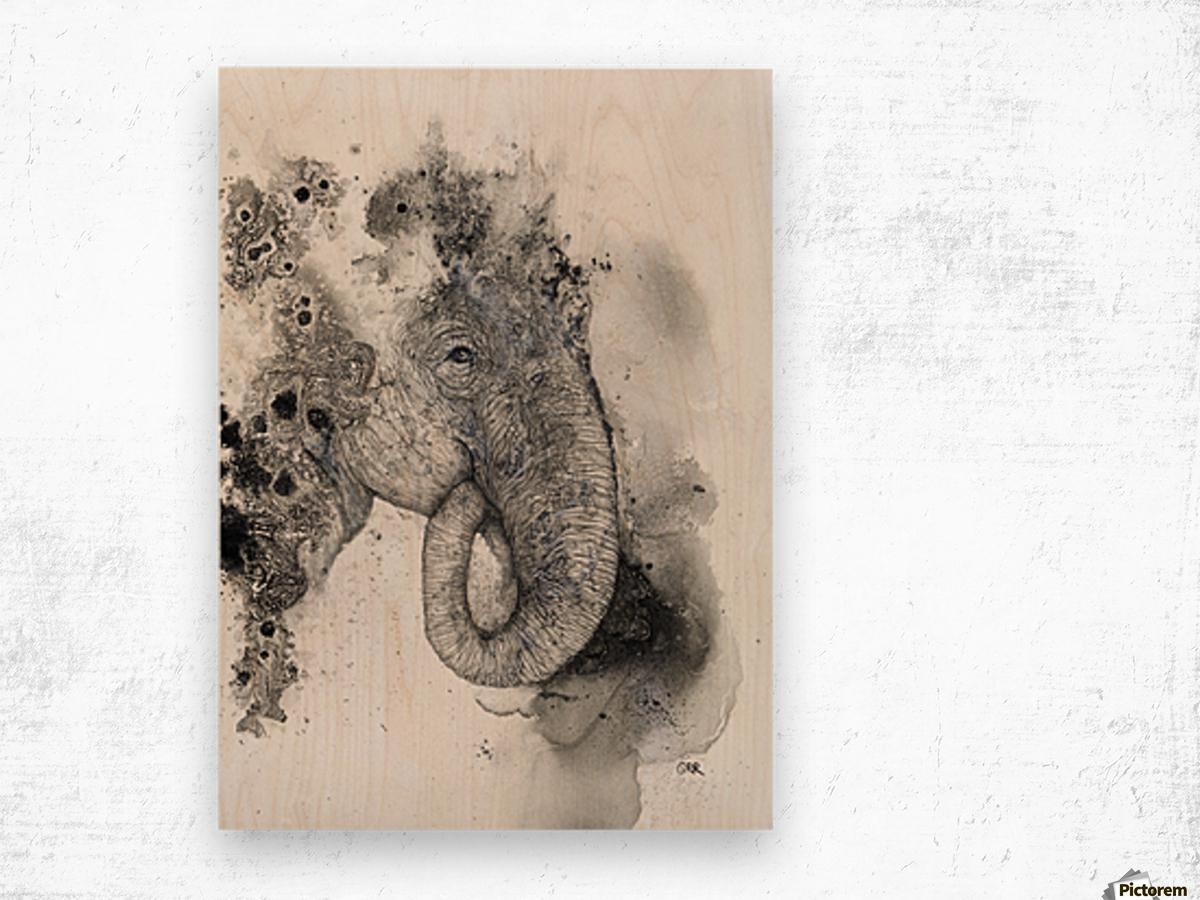 Illustration of an elephant's head Wood print