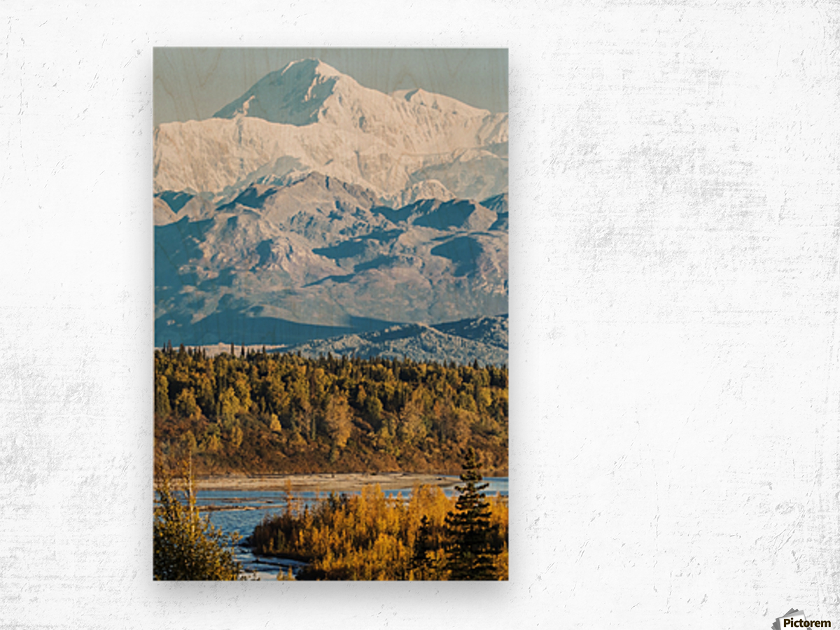Denali, viewed from the Parks Highway, interior Alaska, near South Viewpoint rest stop; Alaska, United States of America Wood print