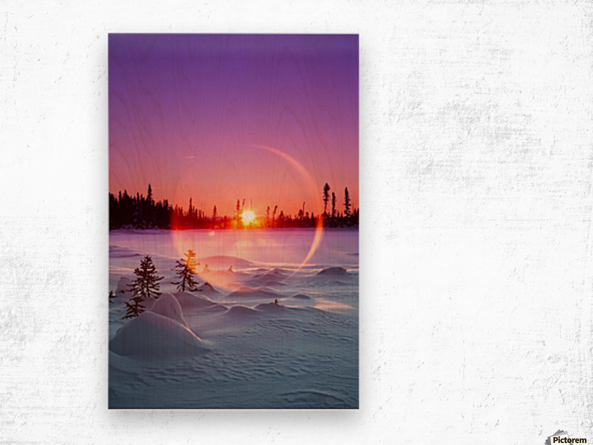Sun flare glowing over a winter landscape; Trapper Creek, Alaska, United States of America Wood print