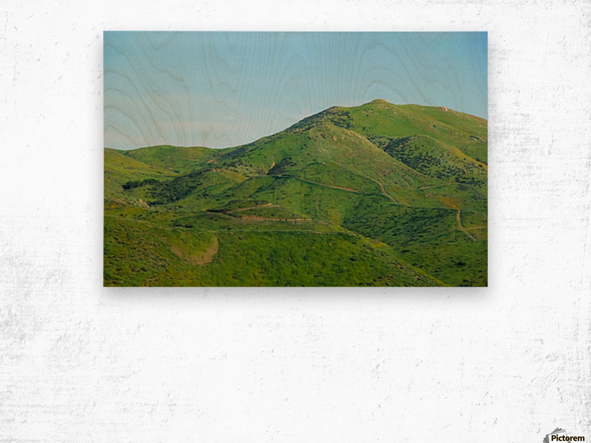 green field and green mountain with blue sky Wood print