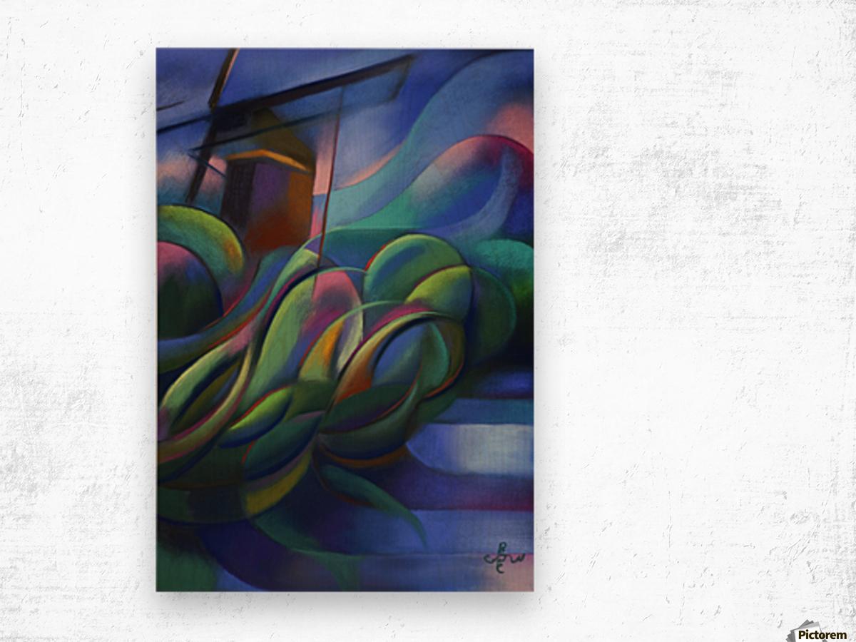 Nieuwe Veenmolen – 18-11-17 Wood print